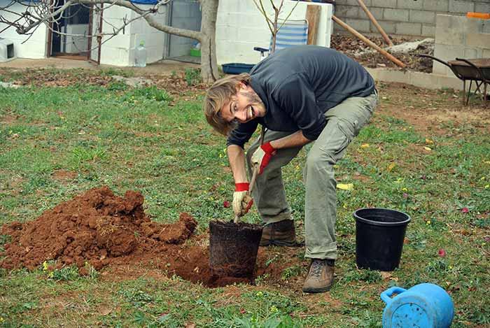 Wer anderen eine Grube gräbt, der pflanzt wahrscheinlich einen Baum (und hat ein Grubengrabgerät ;-))