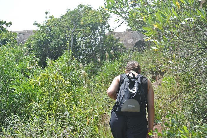 Dschungel-Wanderung bei 35° und tropischer Luftfeuchtigkeit